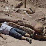 Ditemukan!  Fosil titanosaurus tertua di dunia